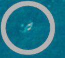 Luftbilder der Jim-Gray-Suche